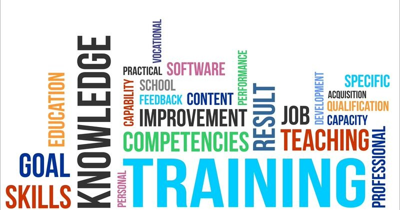 Train and Manage Your Team with Systems
