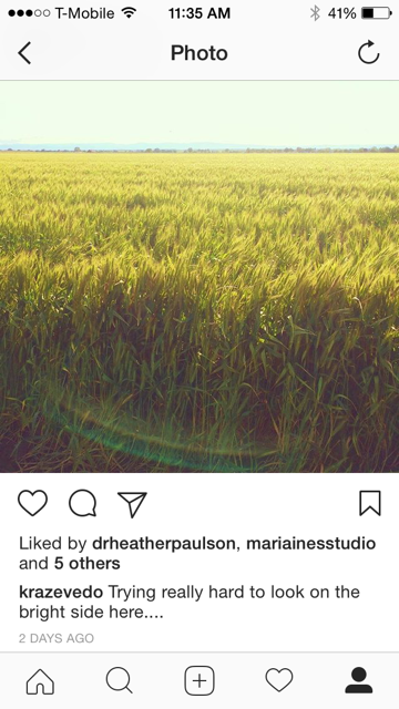 Instagram - field